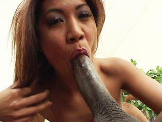 Asiat' bouillante revient du sex shop !